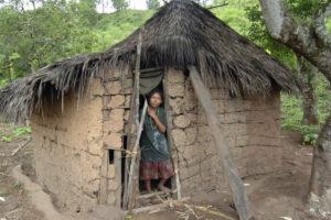 Pueblos tolupanes bajo amenaza de la deforestación y el extractivismo